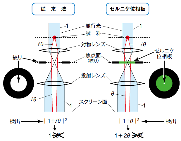 図1 従来法とゼルニケ位相違法の原理