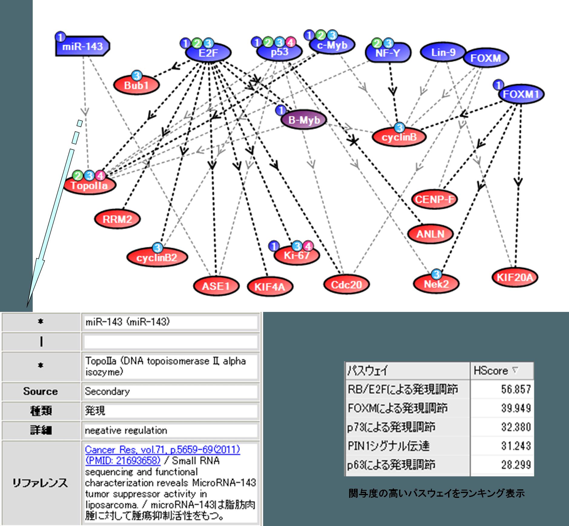 マイクロアレイデータ解析の実例