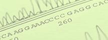 核酸分析関連サービス